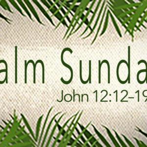 "John 12:12–19 ""A Very Special Palm Sunday"""